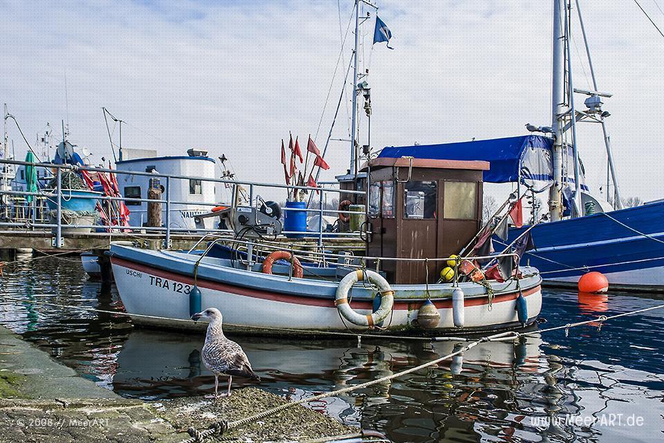 Fischerboote im Hafen von Travemünde // Foto: MeerART