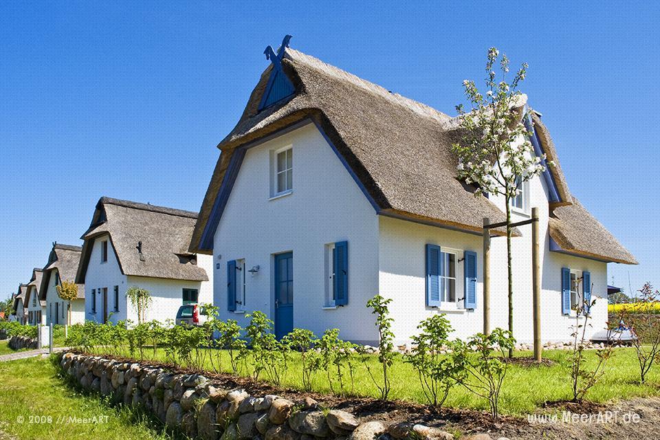 Ferienhäuser auf der Insel Poel // Foto: MeerART