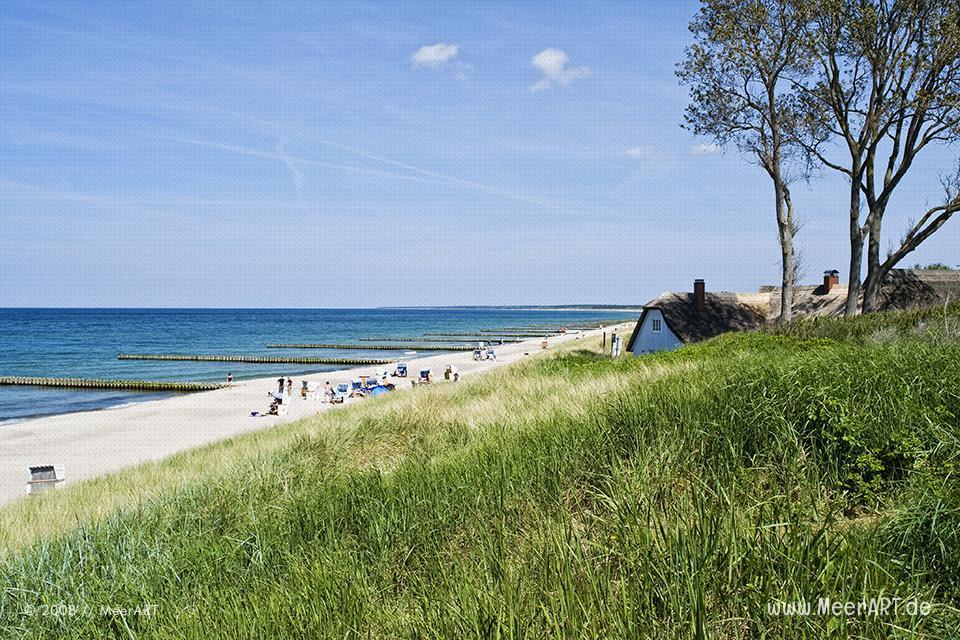 Strandabschnitt auf dem Fischland Darss bei Ahrenshoop // Foto: MeerART