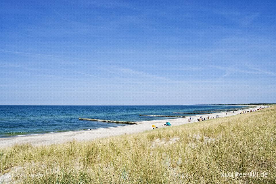Strandabschnit an der Ostseeküste bei Ahrenshoop // Foto: MeerART