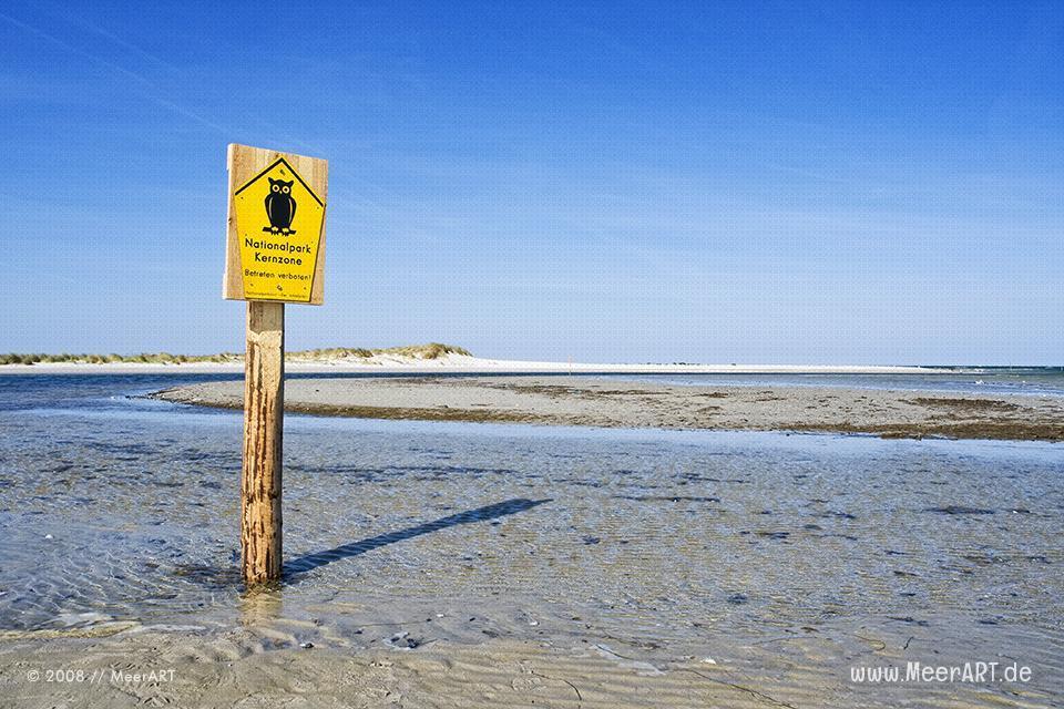 Naturschutzgebiet an der Ostseeküste bei Prerow // Foto: MeerART
