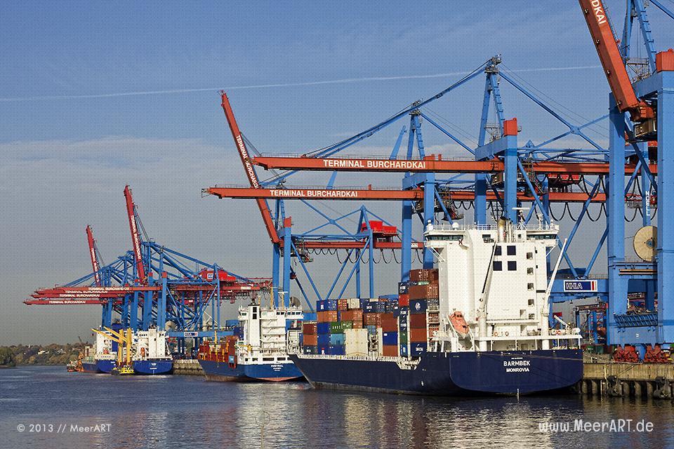 Containerschiffe am Containerterminal Burchardkai im Hamburger Hafen // Foto: MeerART