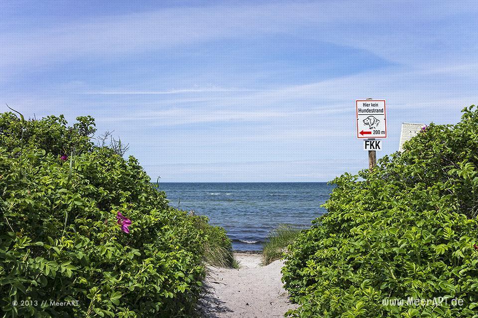 Zugang zu einem FKK Strand an der Ostsee // Foto: MeerART