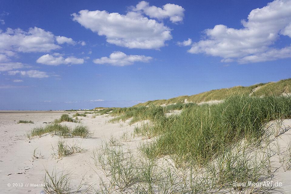Dünenlandschaft am Strand von St. Peter-Ording // Foto: MeerART