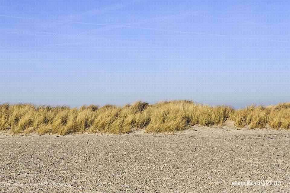 Die Insel Fehmarn und wir – Grüner Brink // Foto: R. Kerpa