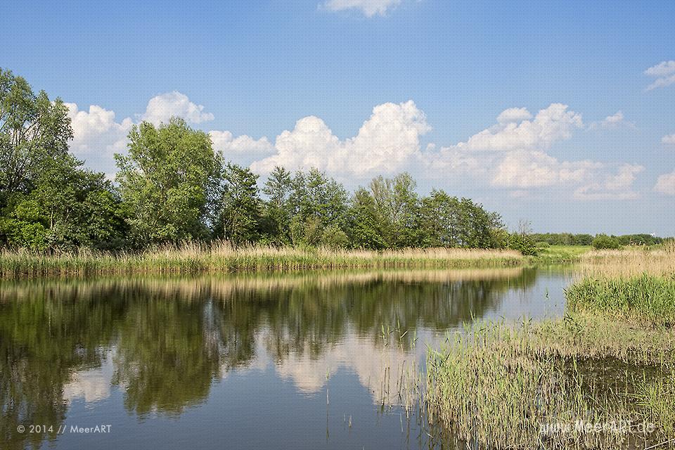 Naturschutzgebiet Meldorfer Bucht // Foto: MeerART