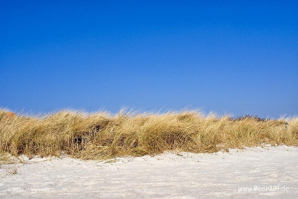 Strand auf Fehmarn // Foto: MeerART