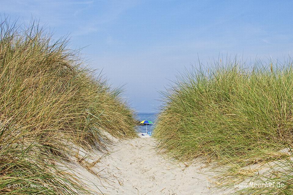 Weg zum Strand an einem Strandabschnitt an der Ostsee // Foto: MeerART