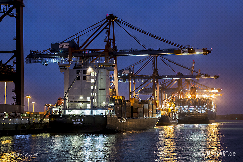 "Containerschiffe am Terminal ""EURGATE"" beim Löschen der Ladung // Foto: MeerART"