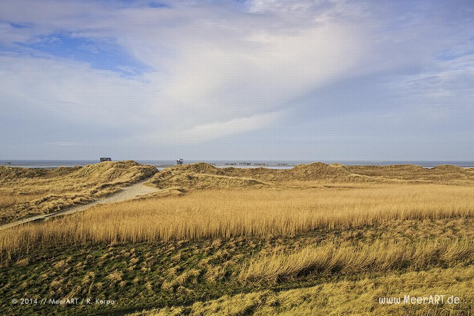 Dünenlandschaft am Strand von St. Peter-Ording // Foto: R. Kerpa