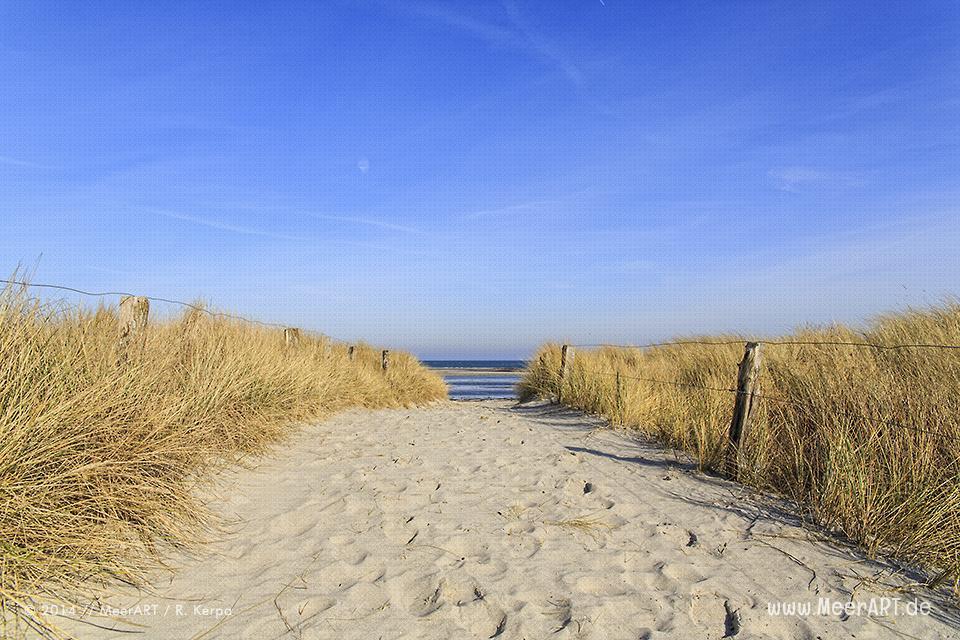 """Strandabschnitt auf der Ostseeinsel Fehmarn beim Naturschutzgebiet """"Grüner Brink"""" // Foto: R. Kerpa"""