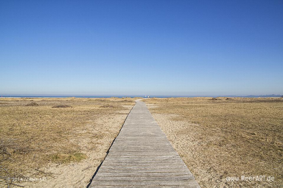 Zugang zum Strand auf dem Priwall in Travemünde // Foto: MeerART