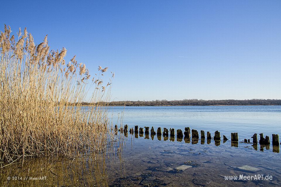 Blick über die Pötenitzer Wiek zum Naturschutzgebiet im ehemaligen Grenzgebiet auf dem Priwall bei Travemünde // Foto: MeerART