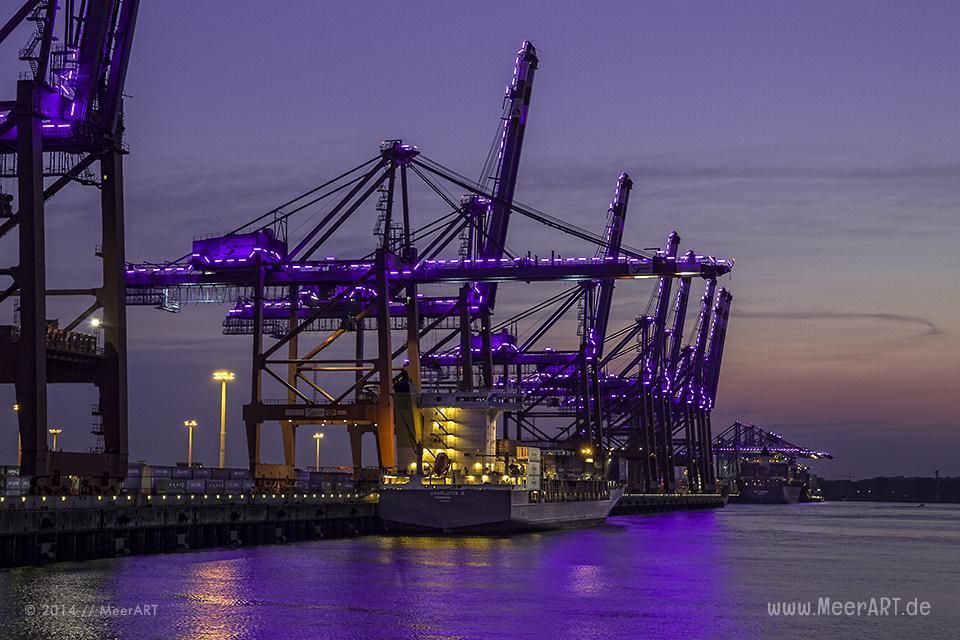 """Containerterminal """"EUROGATE"""" während der Lichtinstallation """"BLUE PORT 2014"""" von Michael Batz in Hamburg // Foto: R. Kerpa"""