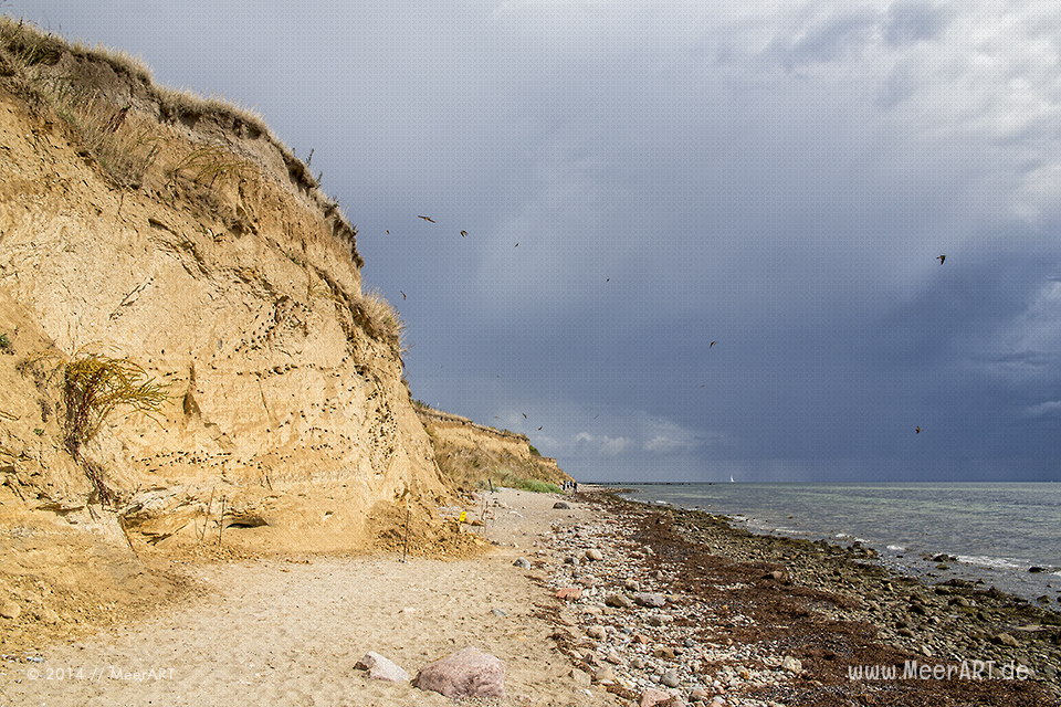 Impressionen von einem Strandabschnitt bei Wulfen (Wulfener Hals) auf der Ostseeinsel Fehmarn // Foto: MeerART