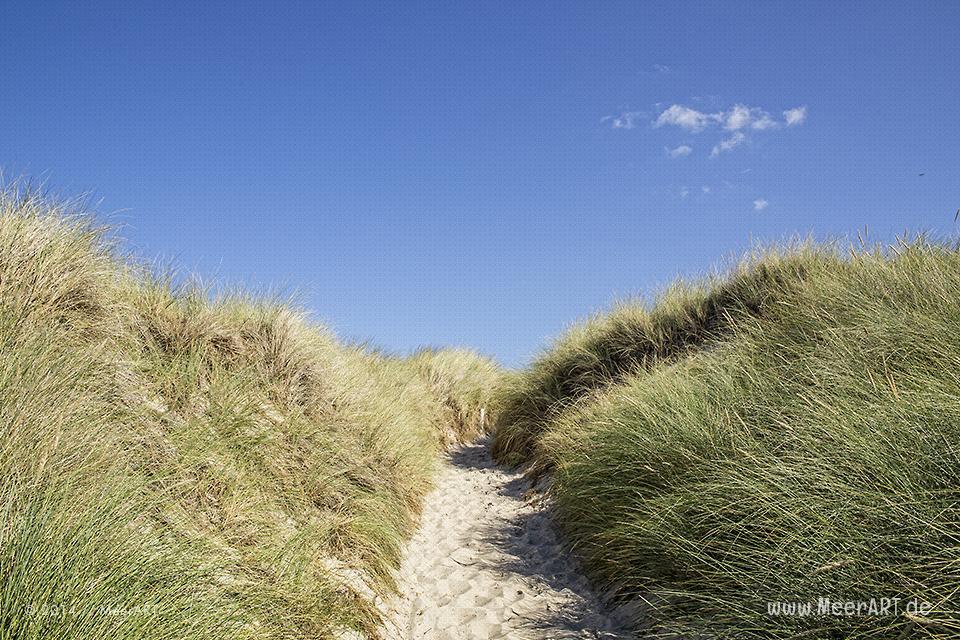 Strandzugang an einem Strandabschnitt am Weststrand bei Ahrenshoop // Foto: MeerART