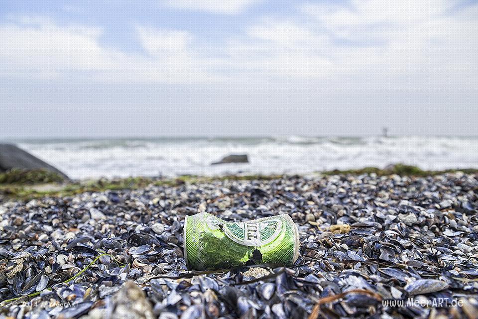 Eine leere Bierdose am Ostseestrand in Marienleuchte auf Fehmarn // Foto: MeerART