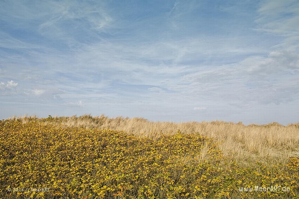 Impressionen aus Heiligenhafen an einem schönen Novembertag // Foto: MeerART