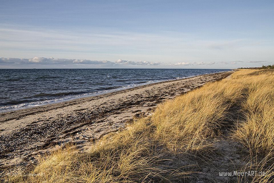 """Impressionen aus dem Naturschutzgebiet """"Wallnau"""" auf der Ostseeinsel Fehmarn // Foto: MeerART"""
