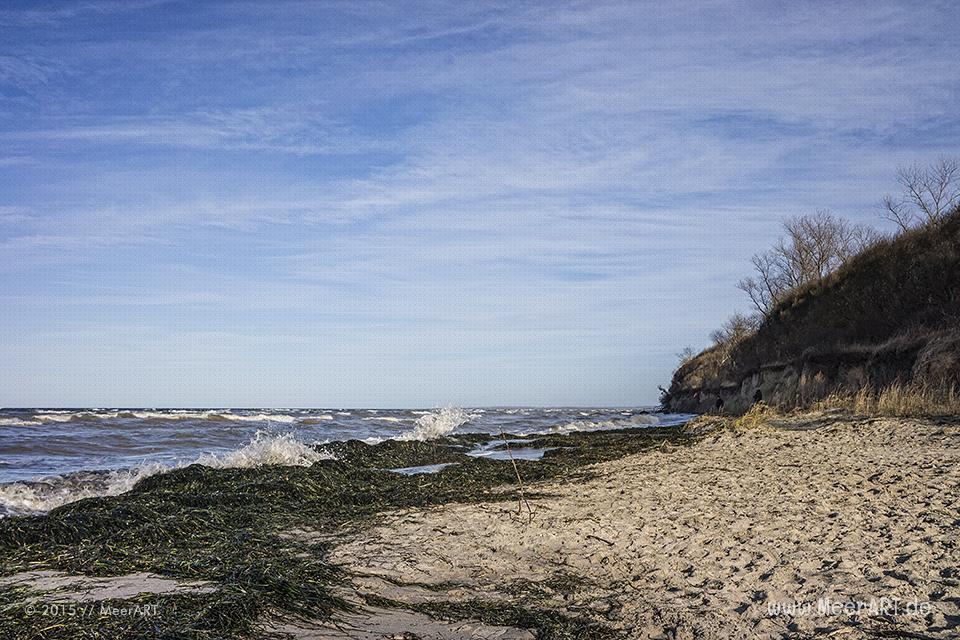 """Strandabschnitt am """"Schwarzen Busch"""" auf der idyllischen Insel Poel // Foto: R. Kerpa"""