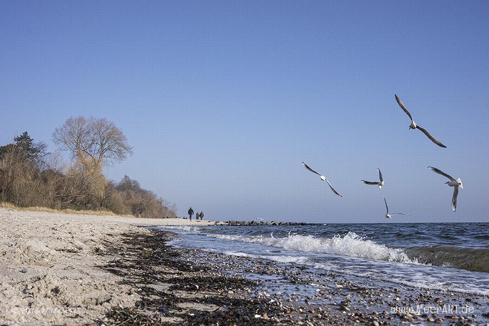 Impressionen von einem wundervollen Wintertag im Ostseebad Sierksdorf // Foto: MeerART