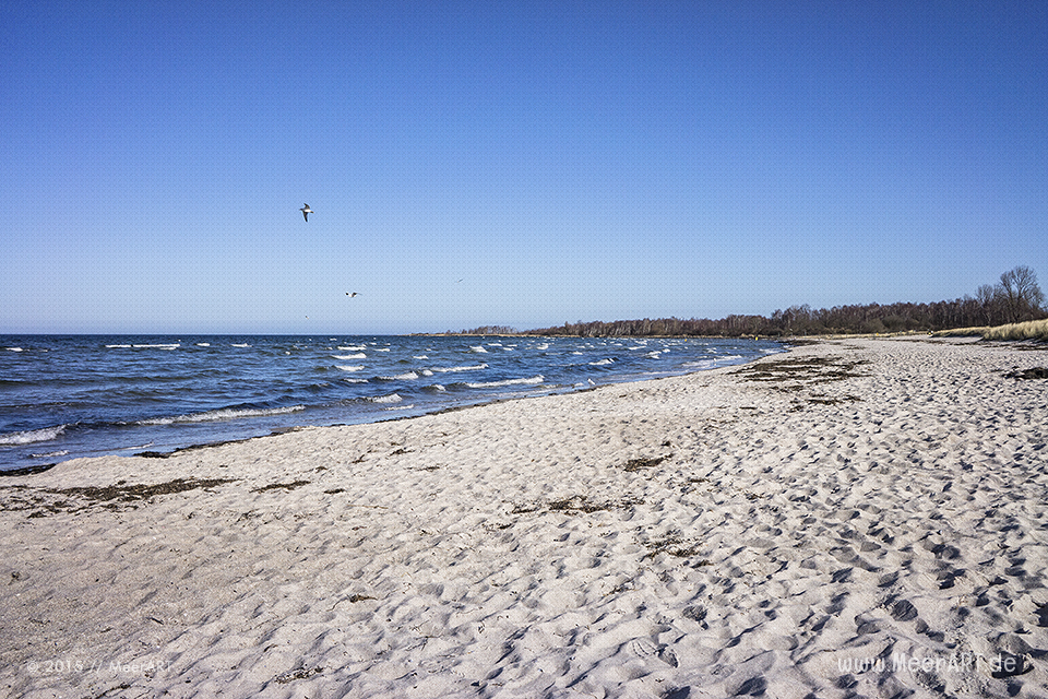 Frühlingserwachen an der Ostsee im Ostseebad Boltenhagen // Foto: MeerART
