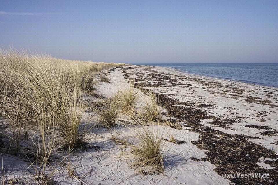 """Ein wunderschöner Frühlingstag auf der Ostseeinsel Fehmarn beim Naturschutzgebiet """"Grüner Brink"""" // Foto: MeerART"""