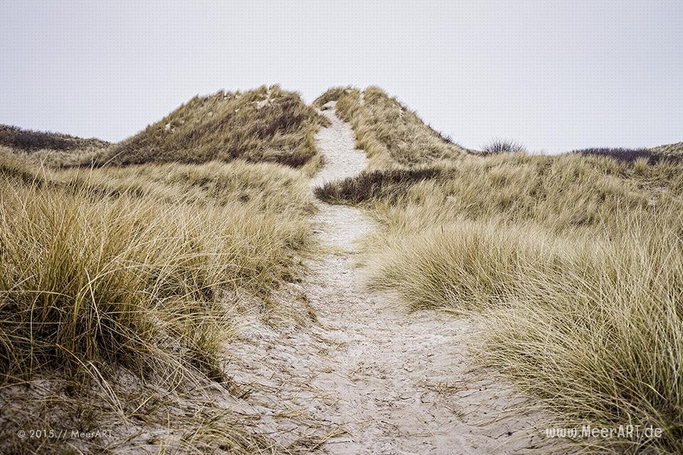 Impressionen von der Nordseeinsel Amrum // Foto: MeerART