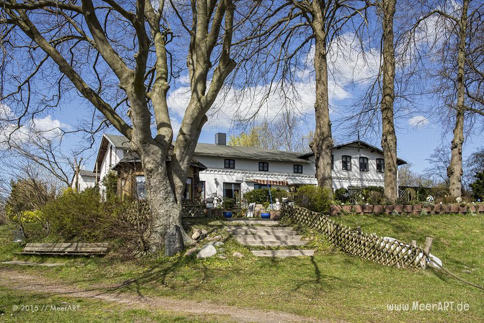 Tour entlang der Schlei über die Ortschaften Lindaunis, Kius bis Ulsnis // Foto: MeerART