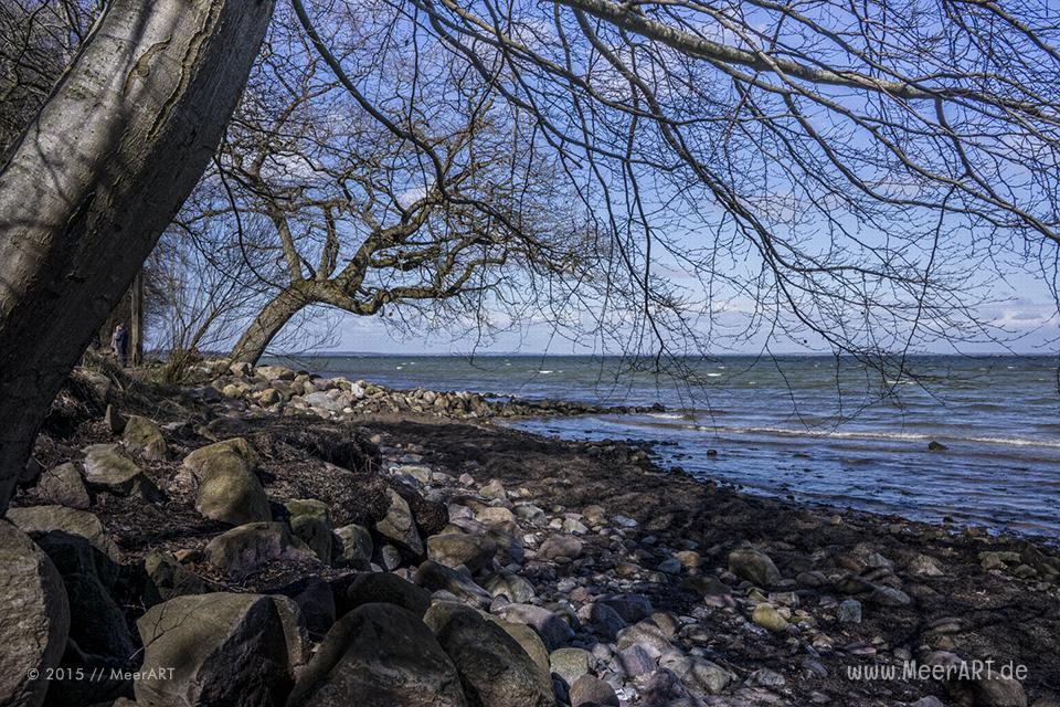 Impressionen vom ruhigen und idyllischen Naturstrandabschnitt in Ohrfeldhaff // Foto: MeerART