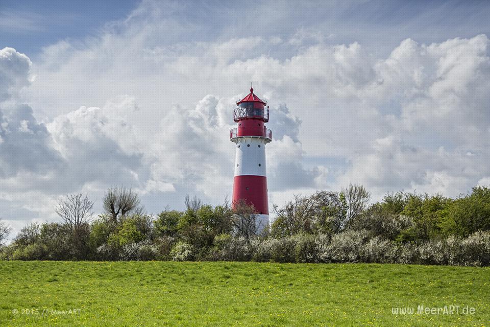 Der Leuchtturm an der Ostseeküste von Falshöft // Foto: MeerART