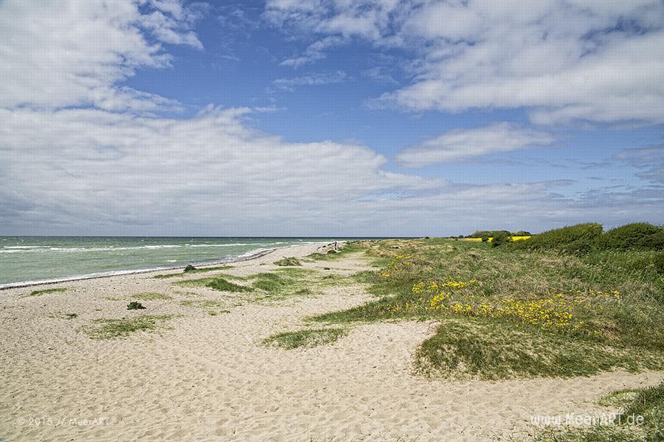 Impressionen von der schönen und idyllischen Ostseeinsel Fehmarn // Foto: MeerART