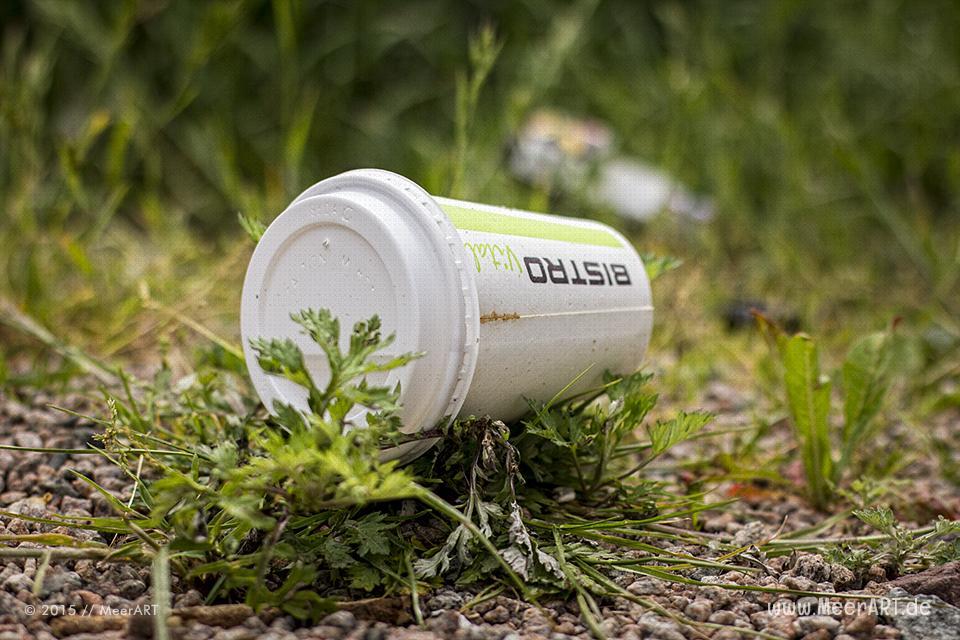 Viel Müll in der Natur auf der Elbinsel in Geesthacht // Foto: MeerART