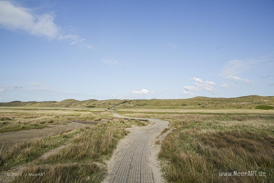 Impressionen von der sehenswerten und wunderschönen westfriesischen Insel Texel in Holland // Foto: MeerART