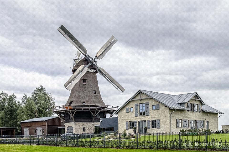 Die Mühle Nicola an der Schlei in Schleswig // Foto: MeerART