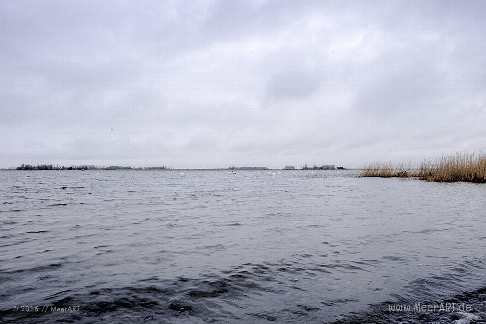 Impressionen von der Ostseeinsel Rügen - Vieregge // Foto: MeerART