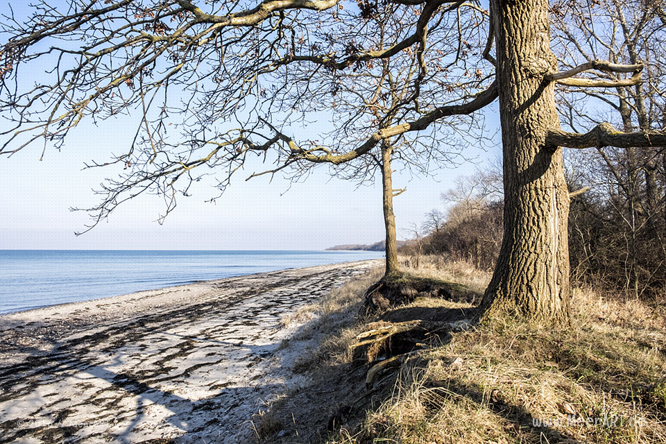Ein sonniger und kalter Tag am Priwall in Travemünde // Foto: MeerART