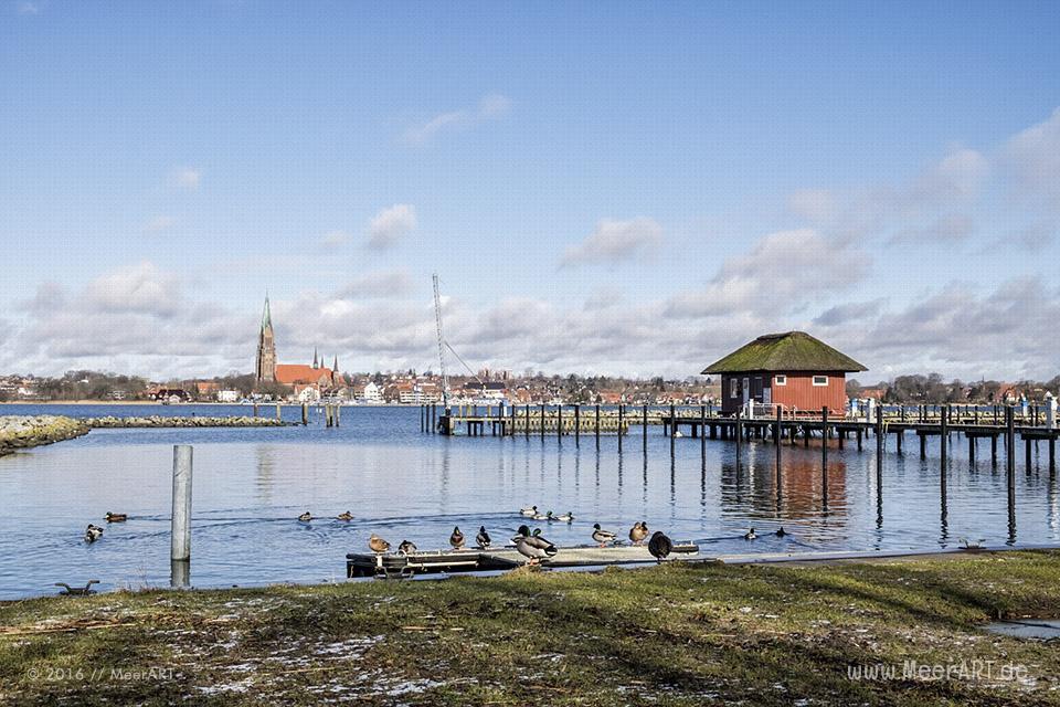 Winterimpressionen von der Schlei bei Haddeby // Foto: MeerART