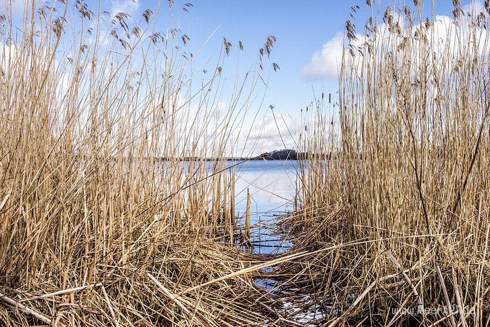 Winterimpressionen aus Haithabu bei Schleswig an der Schlei // Foto: MeerART / Ralph Kerpa