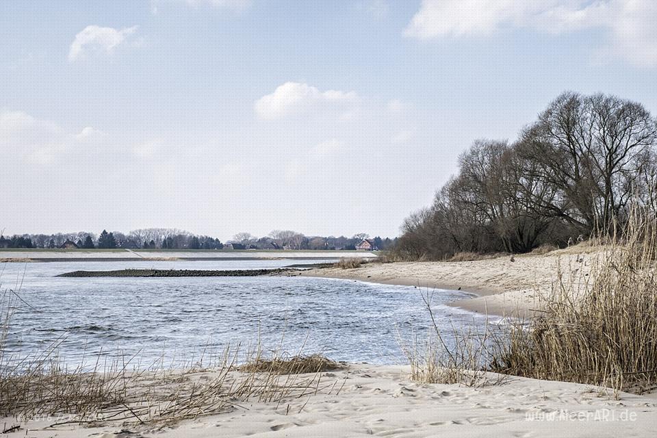 Die Elbe bei der Elbinsel ion Geesthacht // Foto: MeerART