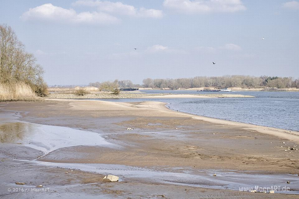 Blick auf die Elbe bei Krauel // Foto: MeerART