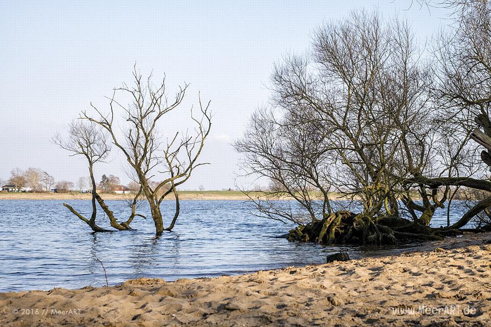 Blick auf die Elbe bei Over // Foto: MeerART