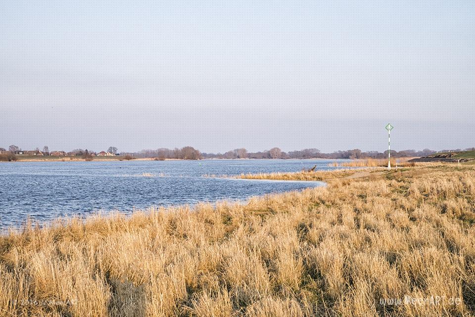 Blick auf die Elbe bei Laßrönne // Foto: MeerART