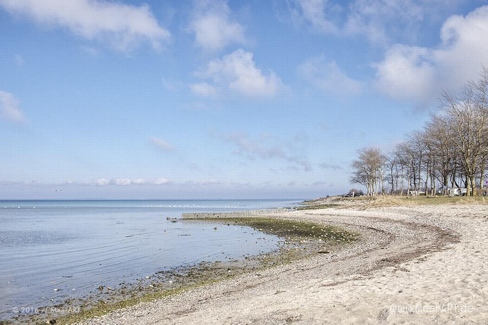 Impressionen von der idyllischen Ostseeküste in Wackerballig /Impressionen von der idyllischen Ostseeküste in Wackerballig // Foto: MeerART/ Foto: MeerART