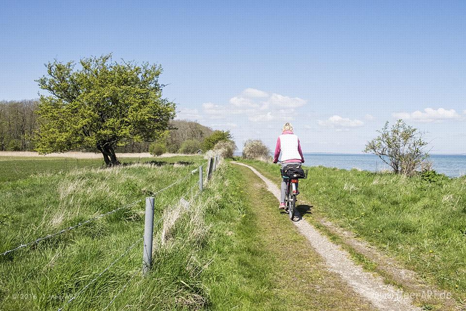 """Impressionen von der """"Panoramatour"""" entlang der Ostseeküste bei der Geltinger Bucht // Foto: MeerART"""