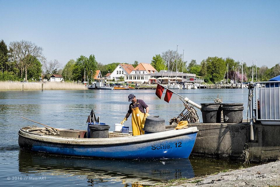 Frühlingsimpressionen aus Missunde an der Schlei // Foto: MeerART / Ralph Kerpa