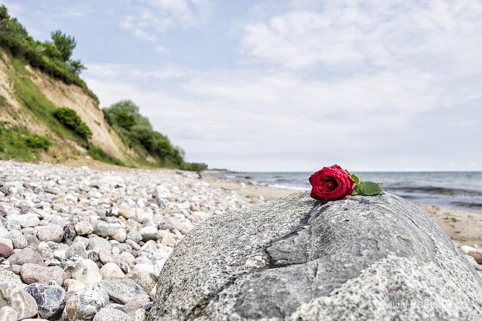 Steilküste an einem Strandabschnitt an der Ostsee bei Waabs // Foto: MeerART