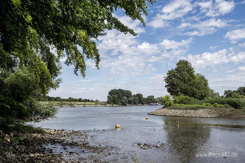 Impressionen von der Suederelbe bei Neuland // Foto: MeerART