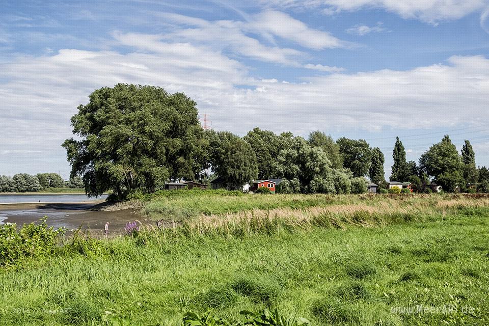 Impressionen von der Elbe bImpressionen von der Elbe bei Over // Foto: MeerARTei Over // Foto: MeerART