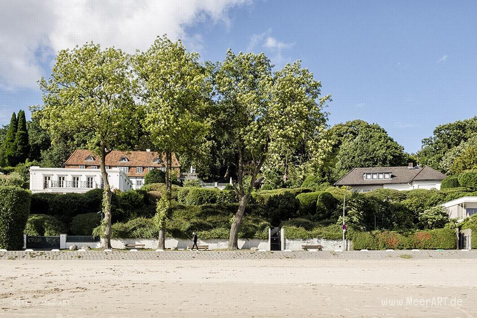 Idyllische Uferlandschaft am Falkensteiner Ufer an der Elbe bei Wittenbergen // Foto: MeerART